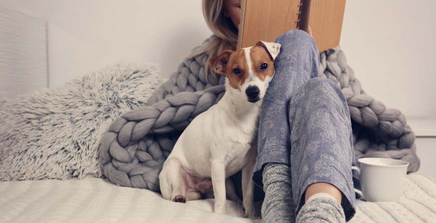 a cuddly white and brown dog sitting on a white bed leaning into a woman who is laying next to him reading a book and wearing blue patterned pajama pants with coffee by her side