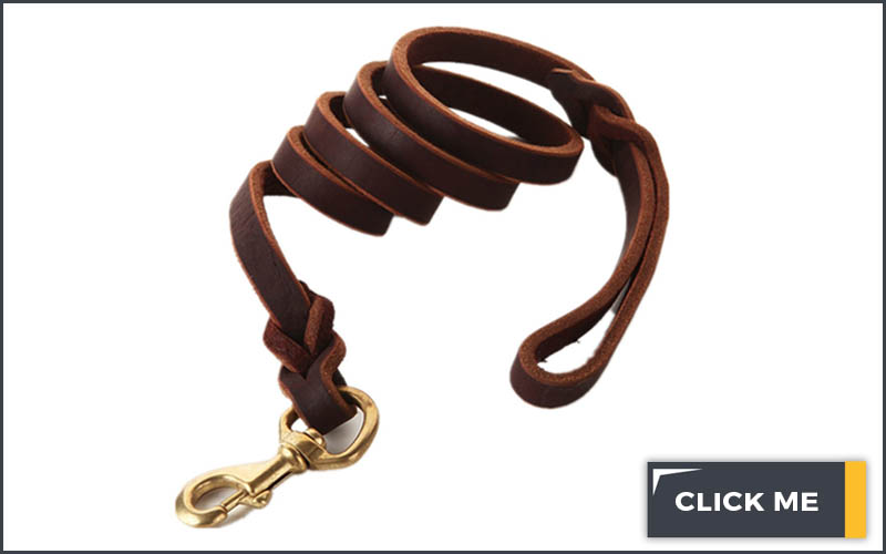 6 foot brown leather leash with brass color clip on white background