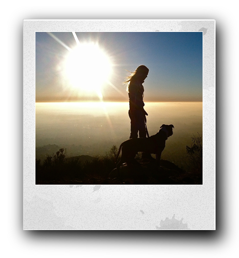 a silhouette of a woman next to a dog on top of a mountain with the sin glaring in the background