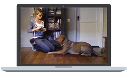 Woman with blue jeans and a grey hoodie kneeling down next to a brown short hair dog laying on a red mat in the living room