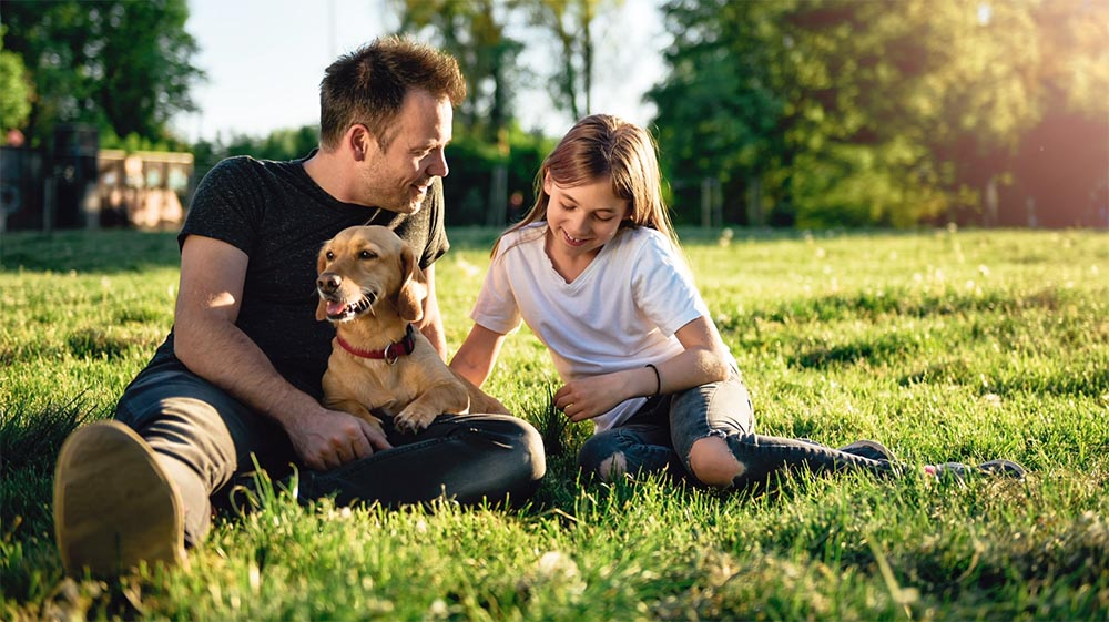 dad and daughter sitting in green grass with a happy and calm dog