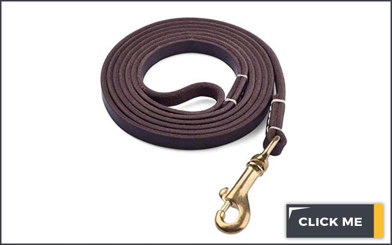 brown leather 6 foot dog leash
